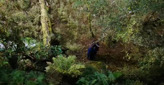 Kralovna reky  River Queen  2005 DVDrip CZdabing