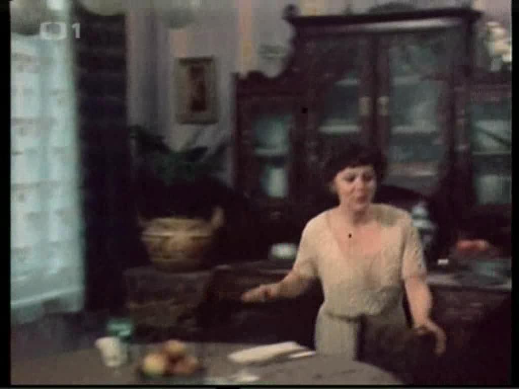 Stastny domov 1982 CR  podle J Haska