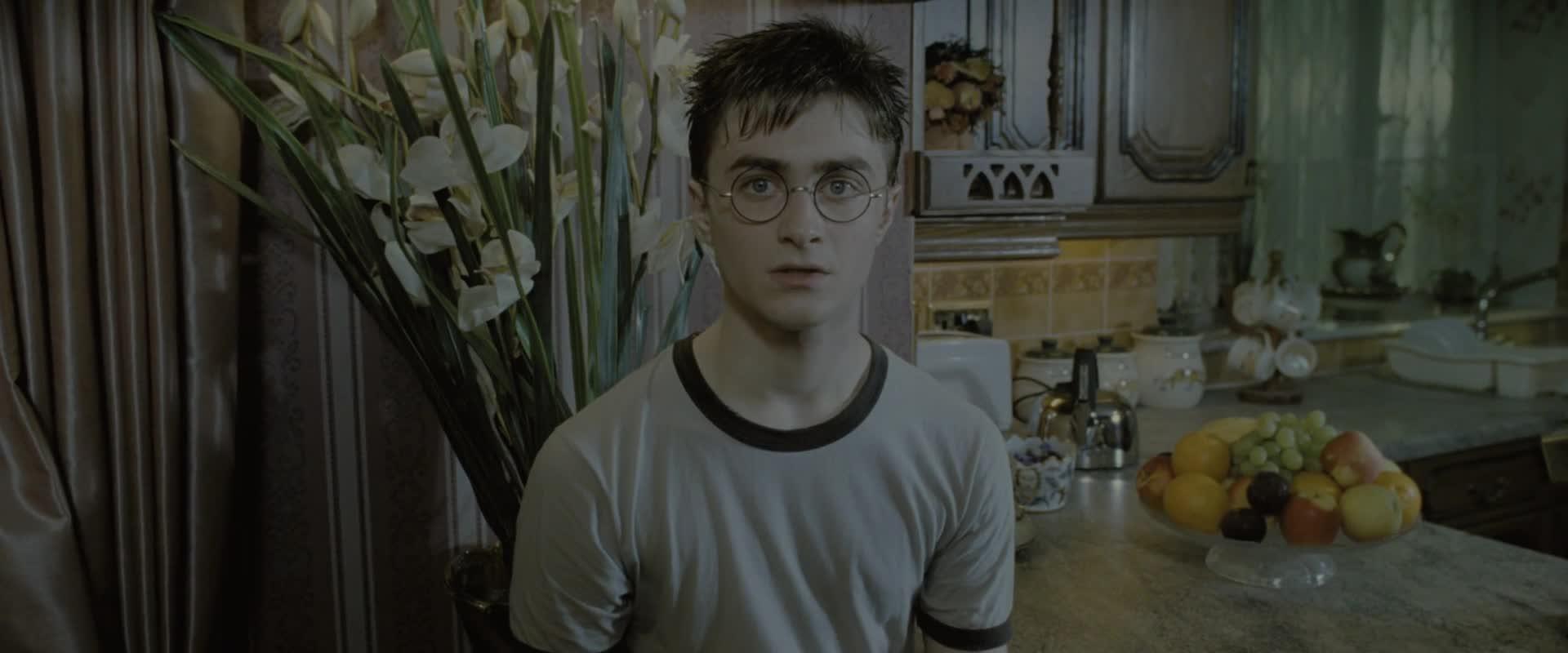 Harry Potter 5 a Fenixuv rad  2007  1080p CZ dabing