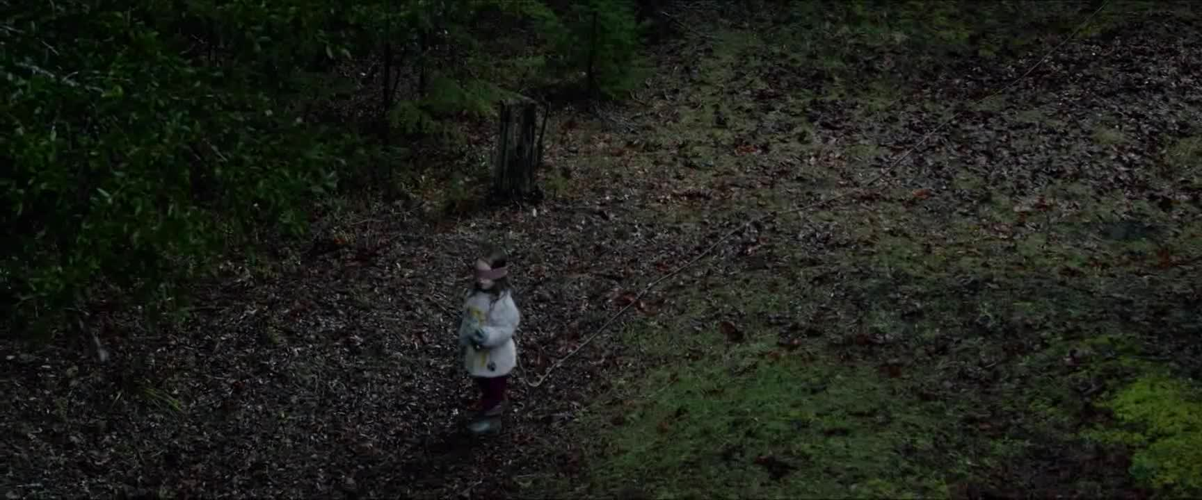 Bird Box 2018 CZ Titulky Netflix HD kvalita