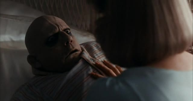 Addamsova Rodina 2 1993 cz