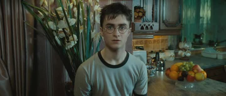 Harry Potter 5 Fenixuv rad 2007 CZ dabing
