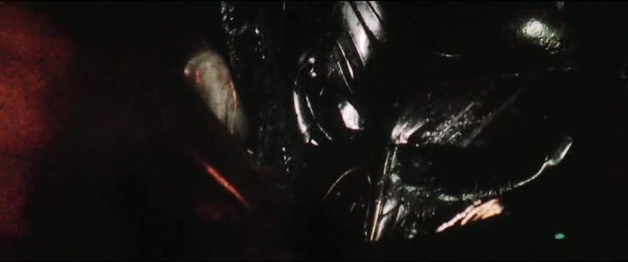 Predator Evoluce 2018 CZ titulky KINO