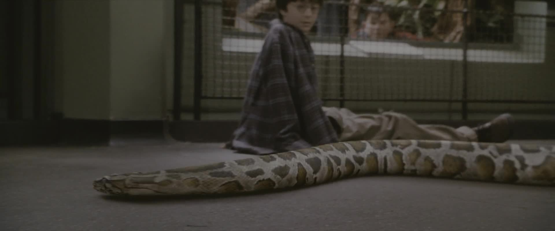 Harry Potter 1 A Kamen Mudrcu  2001 CZ dabing