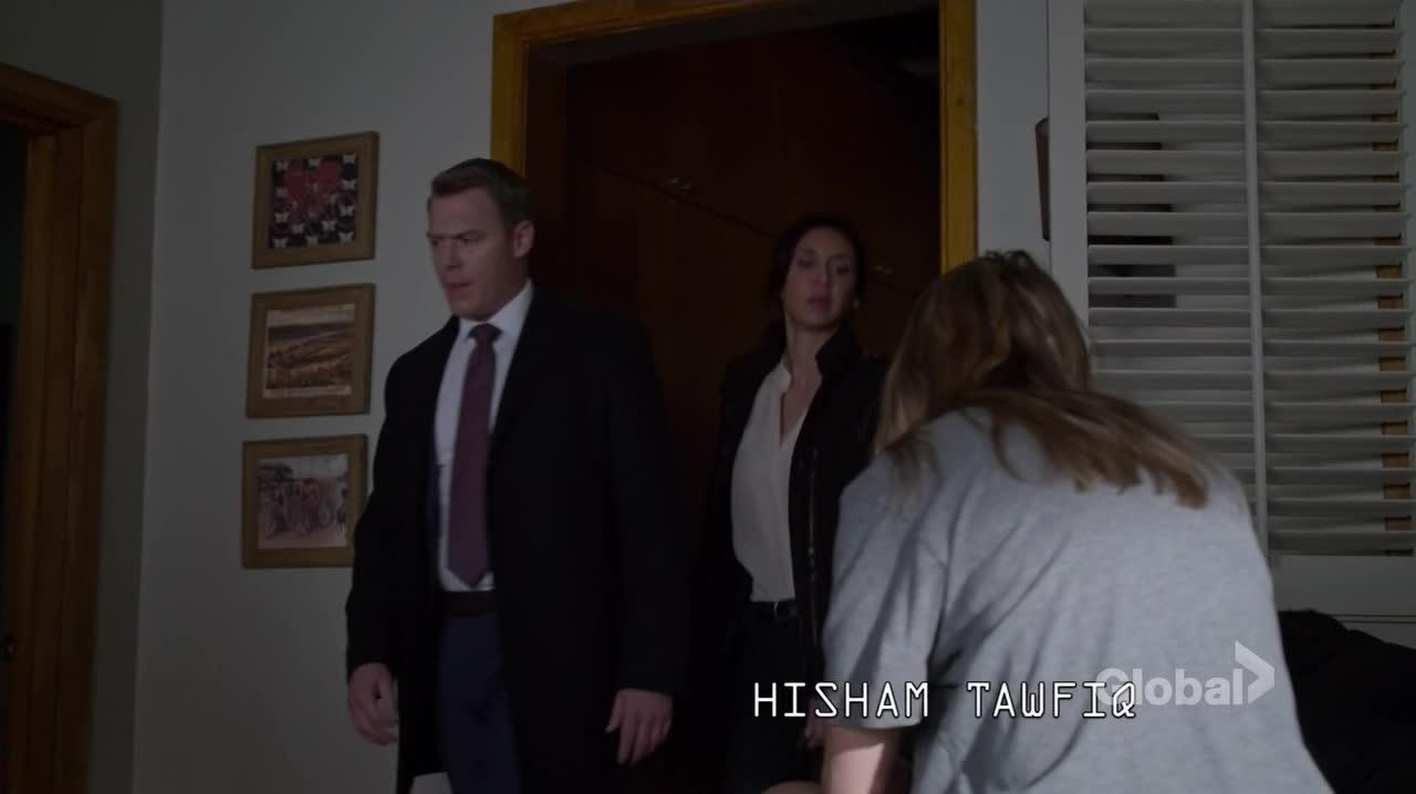 The Blacklist S04E16 720p CZ titulky